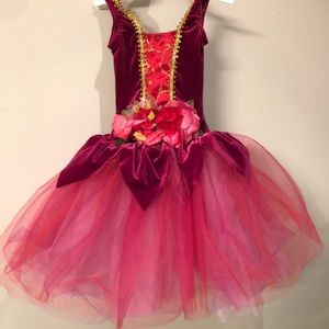Gorgeous deep pink ballet tutu with gold accents